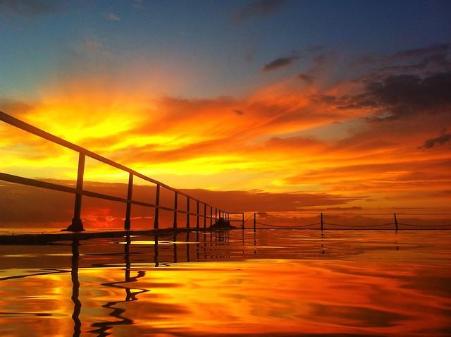 Michael Sutton: Golden waters of Cronulla