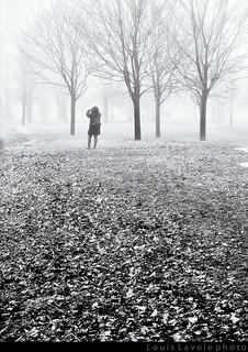 Vive la brouillard pour faire de belles photos (2/6)