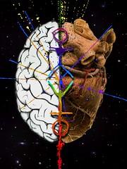 logos, eros, cosmos - cover art