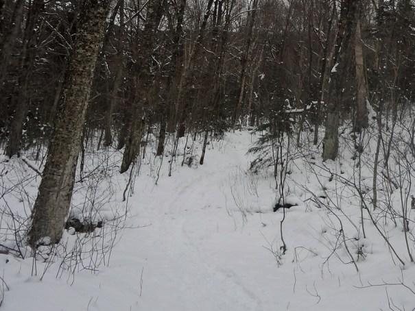 Easy Going Garfield Trail