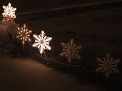 Sepia Snowflakes, Arizona