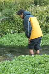 "Pendakian Sakuntala Gunung Argopuro Juni 2014 • <a style=""font-size:0.8em;"" href=""http://www.flickr.com/photos/24767572@N00/26886980080/"" target=""_blank"">View on Flickr</a>"