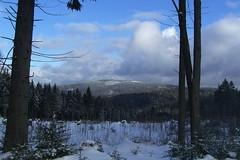 Blick von der Straße bei Weitersglashütte zum Auersberg