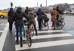 bikes cross the road