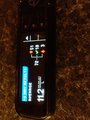 Day 61-2012-03-01 Bring down blood sugar