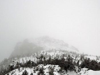 Mt. Washington Lion Head