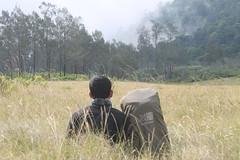 "Pendakian Sakuntala Gunung Argopuro Juni 2014 • <a style=""font-size:0.8em;"" href=""http://www.flickr.com/photos/24767572@N00/27066816752/"" target=""_blank"">View on Flickr</a>"