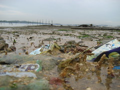 19world-oceans-day-cleanup-recce_pasir_ris_6-8...