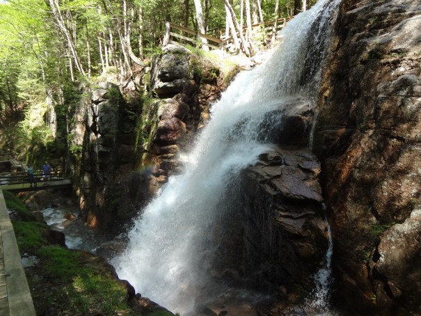 Avalanche Falls in Flume Gorge