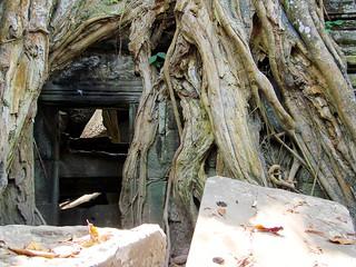 angkor - cambodge 2007 23