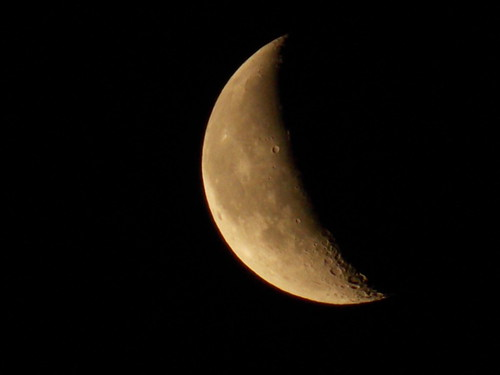 The Luna (Ali Cihan Ozsut) moon night nikon zoom best luna crescent telephoto waxing waning l810