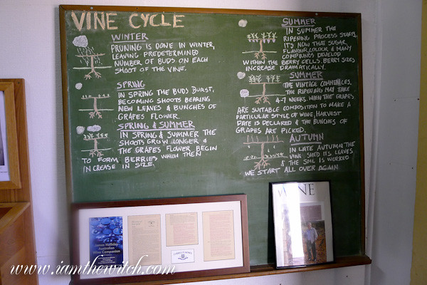 Tyrrells wine cycle