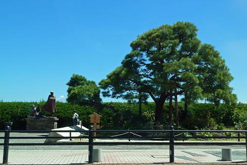 お宮の松(Omiya-no-matsu, Atami, Shizuoka, Japan)