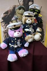 073012 St Jude Bears