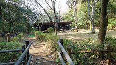 獅子ヶ谷市民の森(新池広場)(Shin-ike Square, Shishigaya Community Woods)