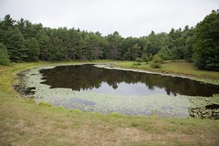 Pond behind the old farm house