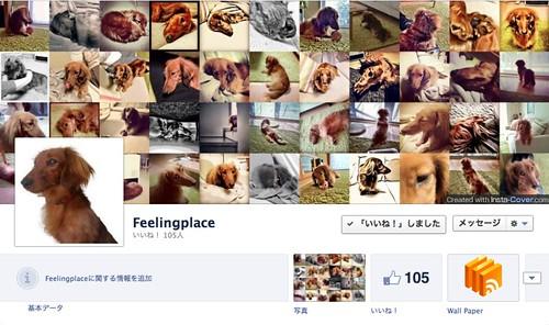 Feelingplace