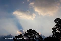 Cloud's shadows...
