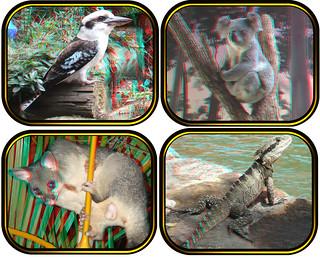 Australian Animals in 3D