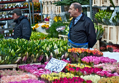London - Columbia Road Flower Market