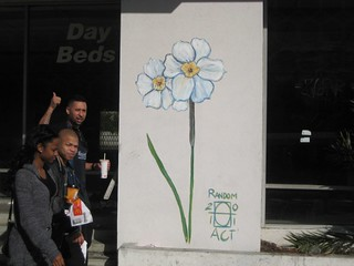 Narcissus 2011 Random Act