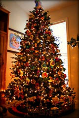 My Parents Tree