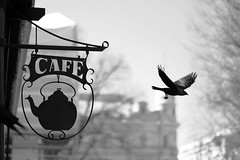 Coffee gives you wings