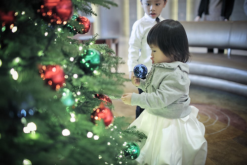 20111210_Collection_1_0023