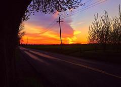 "Allie Bunnell - Sunset <a style=""margin-left:10px; font-size:0.8em;"" href=""http://www.flickr.com/photos/9089158@N06/26618349153/"" target=""_blank"">@flickr</a>"