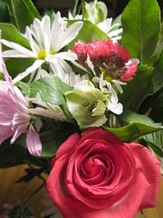 Day 45 - Valentine's Day
