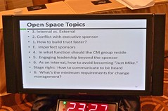 Participant created Open Space topics