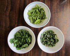 Herbs  (147)