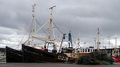 #013 fishing boats