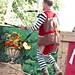 Renaissance Pleasure Faire 2012 095
