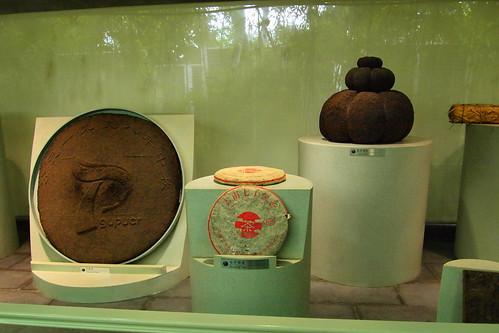 茶葉博物館1