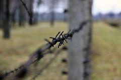 Auschwitz by j.guo., on Flickr