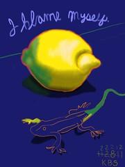 112811 Lemon