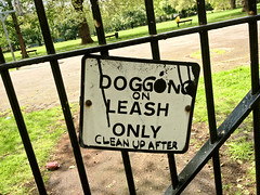 Dogging on a Leash Only