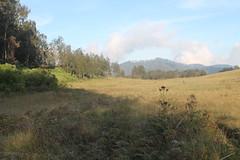 "Pendakian Sakuntala Gunung Argopuro Juni 2014 • <a style=""font-size:0.8em;"" href=""http://www.flickr.com/photos/24767572@N00/27093209301/"" target=""_blank"">View on Flickr</a>"