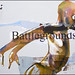 """Battlegrounds • <a style=""""font-size:0.8em;"""" href=""""http://www.flickr.com/photos/83523505@N04/8169335920/"""" target=""""_blank"""">View on Flickr</a>"""