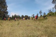 "Pendakian Sakuntala Gunung Argopuro Juni 2014 • <a style=""font-size:0.8em;"" href=""http://www.flickr.com/photos/24767572@N00/27093237611/"" target=""_blank"">View on Flickr</a>"