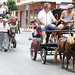 """2012-07-29-feria-almoradi-desfile-animales-tradicionales • <a style=""""font-size:0.8em;"""" href=""""http://www.flickr.com/photos/51501120@N05/7669714696/"""" target=""""_blank"""">View on Flickr</a>"""