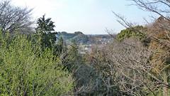 獅子ヶ谷市民の森(鋸坂上からの眺望)(Scene from Nokogirizaka Ave., Shishigaya Community Woods)