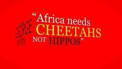 """Africa Needs Cheetahs, Not Hippos"""