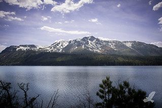 Mt. Tallac | Beautiful South Lake Tahoe *EXPLORED*