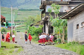 dieng plateau - java - indonesie 31