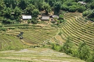 sapa - vietnam 61