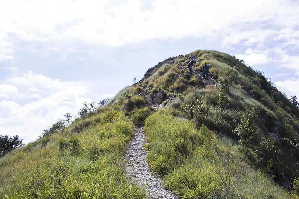 Trilha Morro do Sabóo - trilha quase no topo do morro