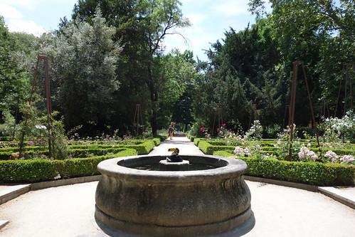 Dans le jardin botanique royal !