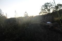 "Pendakian Sakuntala Gunung Argopuro Juni 2014 • <a style=""font-size:0.8em;"" href=""http://www.flickr.com/photos/24767572@N00/26557219893/"" target=""_blank"">View on Flickr</a>"